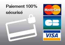 secure payment image